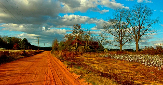 old-farmhouse-dirt-road-cotton-field-mystic-ga-picture-image-photograph-copyright-brian-brown-vanishing-south-georgia-usa-2013 rev